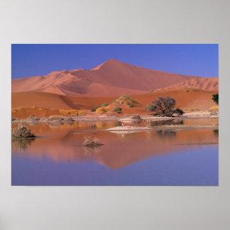 Africa, Namibia. Namib-Naukluft Park. 2 Poster