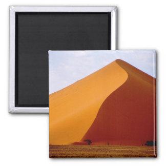Africa, Namibia, Naukluft National Park, 2 Magnet