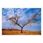 Africa, Namibia, Naukluft National Park, Photo Art