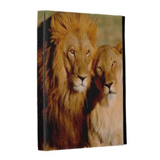 África, Namibia, Okonjima. León y leona