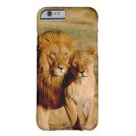 África, Namibia, Okonjima. León y leona Funda De iPhone 6 Barely There