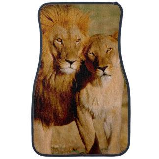 Africa, Namibia, Okonjima. Lion & lioness Car Floor Mat