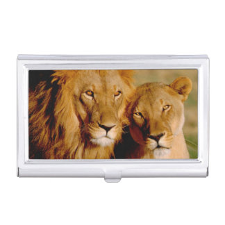 Africa, Namibia, Okonjima. Lion & lioness Case For Business Cards