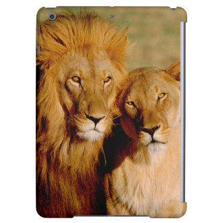 Africa, Namibia, Okonjima. Lion & lioness Case For iPad Air