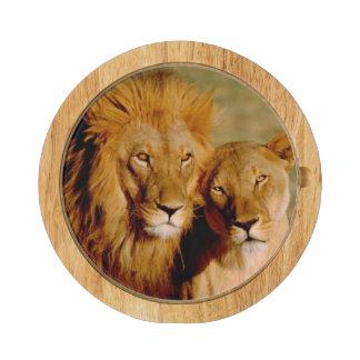 Africa, Namibia, Okonjima. Lion & lioness Round Cheeseboard