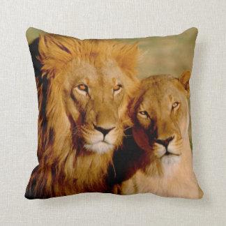 Africa, Namibia, Okonjima. Lion & lioness Throw Pillow