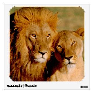 Africa, Namibia, Okonjima. Lion & lioness Wall Sticker
