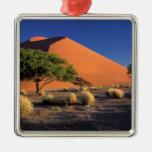 África, Namibia, parque de Namib-Naukluff, Adorno Navideño Cuadrado De Metal