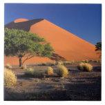 África, Namibia, parque de Namib-Naukluff, Sossosv Azulejo Cuadrado Grande