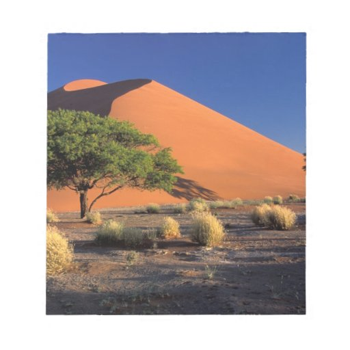 África, Namibia, parque de Namib-Naukluff, Sossosv Bloc De Notas