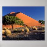 África, Namibia, parque de Namib-Naukluff, Sossosv Poster