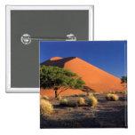 África, Namibia, parque de Namib-Naukluff, Sossosv Pin Cuadrado