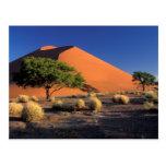 África, Namibia, parque de Namib-Naukluff, Sossosv Tarjetas Postales