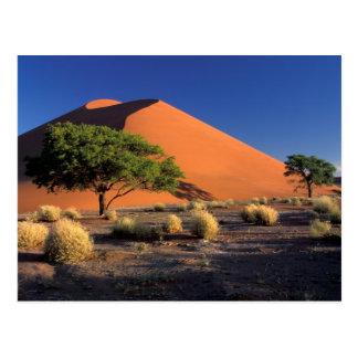África, Namibia, parque de Namib-Naukluff, Tarjeta Postal