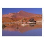 África, Namibia. Parque de Namib-Naukluft. 2 Felicitación
