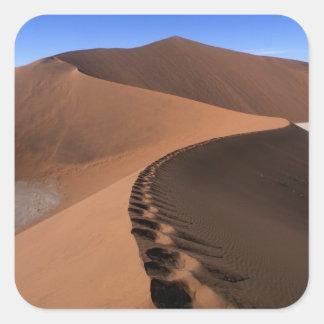 África, Namibia, parque nacional de Namib Pegatina Cuadrada