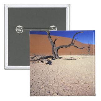 Africa, Namibia, Sossusvlei Region. Sand dunes Button