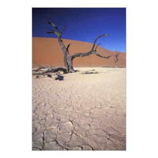 Africa, Namibia, Sossusvlei Region. Sand dunes Photo Print