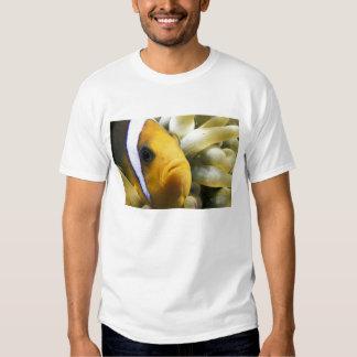 Africa, Red Sea. Twoband Anemonefish T Shirt
