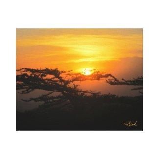 Africa Rising Canvas Print