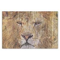 Africa safari animal wildlife majestic lion tissue paper