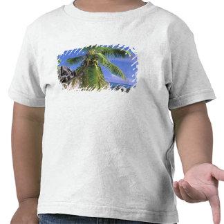 África, Seychelles, isla de Digue del La. Granito Camiseta
