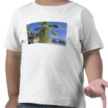 Africa, Seychelles, La Digue Island. Granite 2 T-shirts