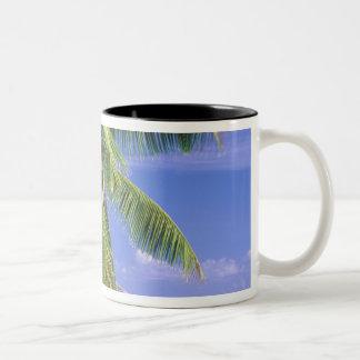 Africa, Seychelles, La Digue Island. Granite 2 Two-Tone Coffee Mug