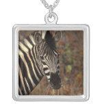 Africa, South Africa, Kruger NP Zebra portrait Pendant