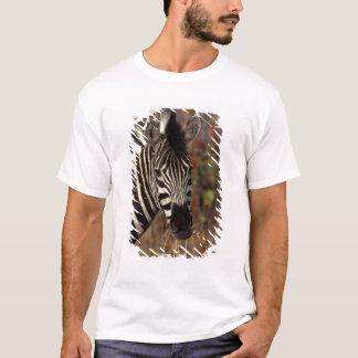 Africa, South Africa, Kruger NP Zebra portrait T-Shirt