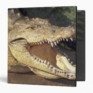 Africa, South Africa Nile crocodile Vinyl Binders
