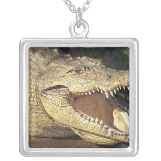 Africa, South Africa Nile crocodile Square Pendant Necklace