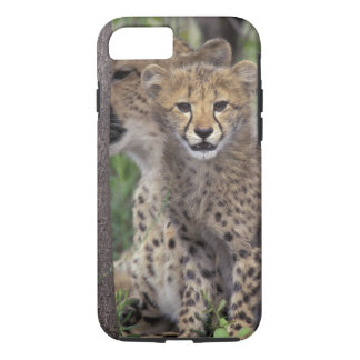 Africa, South Africa, Phinda Preserve. Cheetah iPhone 7 Case