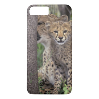 Africa, South Africa, Phinda Preserve. Cheetah iPhone 7 Plus Case