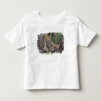 Africa, South Africa, Phinda Preserve. Cheetah Toddler T-shirt