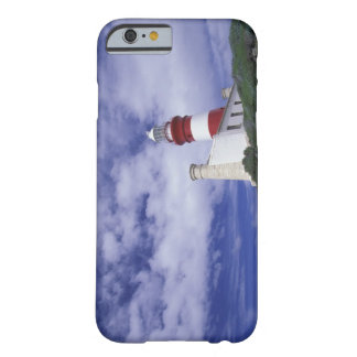Africa, South Africa, Western Cape, Cape Barely There iPhone 6 Case