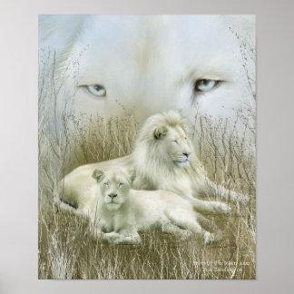 Africa - Spirit Of The White Lion Art Poster/Print