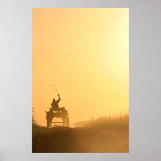 Africa sunset (dusk) scene: Kalahari donkey cart Poster