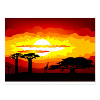 Africa sunset postcard