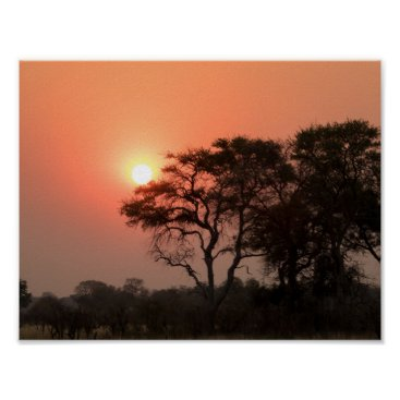 Professional Business Africa Sunset Trees Nature Landscapes Skies Poster