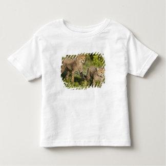 Africa. Tanzania. Cheetah cubs at Ndutu in the Toddler T-shirt