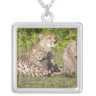 Africa Tanzania Cheetah mother and cubs 2 Pendants