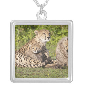 Africa. Tanzania. Cheetah mother and cubs 2 Square Pendant Necklace