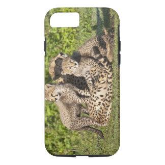 Africa. Tanzania. Cheetah mother and cubs iPhone 8/7 Case