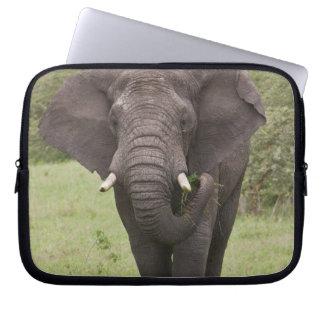Africa. Tanzania. Elephant at Ngorongoro Crater, Computer Sleeve