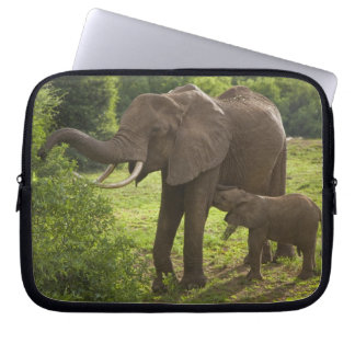 Africa. Tanzania. Elephant mother and calf at 2 Computer Sleeve