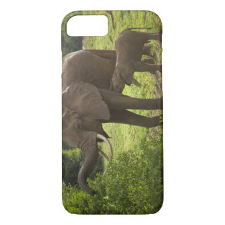 Africa. Tanzania. Elephant mother and calf at 2 iPhone 8/7 Case