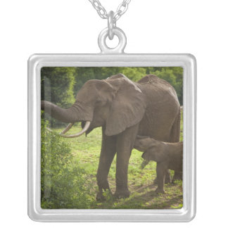 Africa. Tanzania. Elephant mother and calf at 2 Square Pendant Necklace