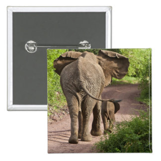 Africa. Tanzania. Elephant mother and calf at Pins