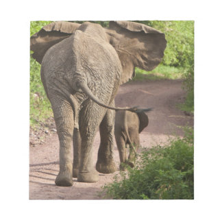 Africa. Tanzania. Elephant mother and calf at Notepad